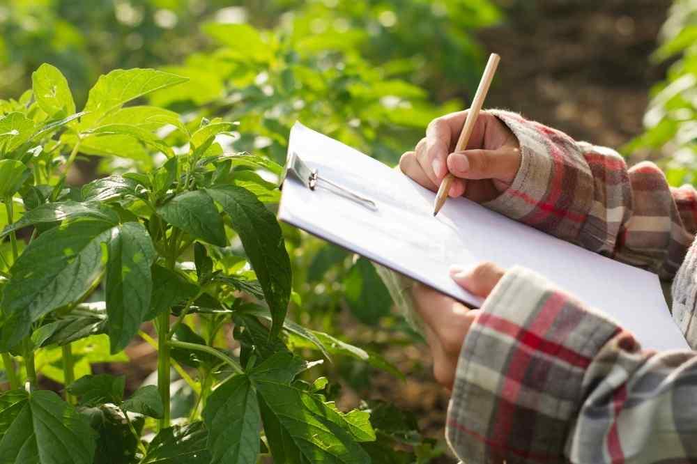 Agro- en groenbeheer-studierichting-school-tectura