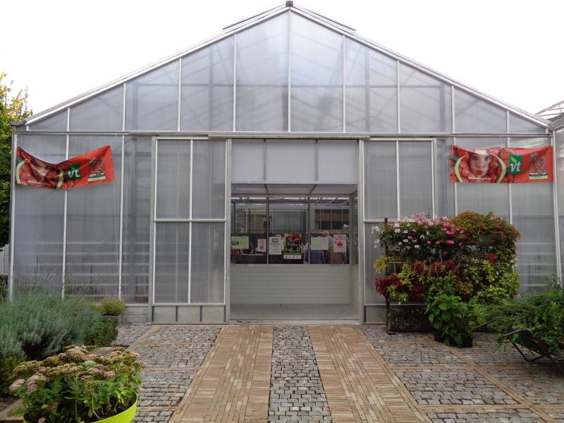 De Leerwinkel Melle Bloeiende en groene kamerplanten